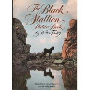 The Black Stallion Picture Book - Walter Farley