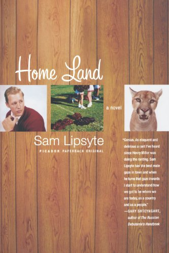 Home Land: A Novel - Sam Lipsyte
