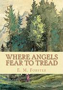 Where Angels Fear to Tread