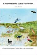 Birdwatching Guide to Donana