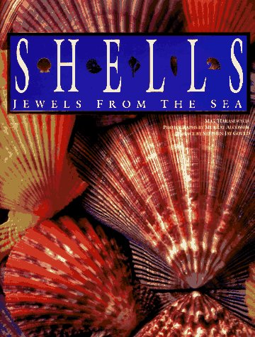 Shells: Jewels from the Sea - M. G. Harasewych