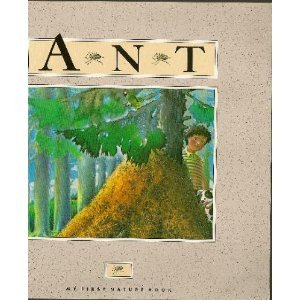 The Ant (My First Nature Book) - Andrienne Soutter-Perrot