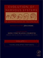 Evolution of Nervous Systems, Four-Volume Set - Kaas, Jon K.