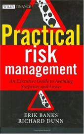 Practical Risk Management: An Executive Guide to Avoiding Surprises and Losses - Banks, Erik / Dunn, Richard