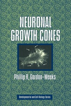 Neuronal Growth Cones - Gordon-Weeks, Phillip R.