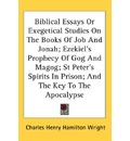 Biblical Essays or Exegetical Studies on the Books of Job and Jonah; Ezekiel's Prophecy of Gog and Magog; St Peter's Spirits in Prison; And the Key to the Apocalypse - Charles Henry Hamilton Wright