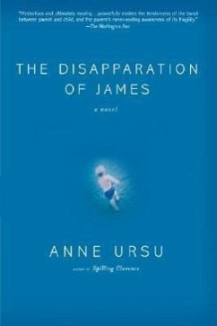 The Disapparation of James - Ursu, Anne