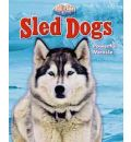 Sled Dog - Stephen Person