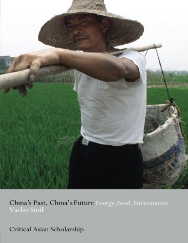 China's Past, China's Future (Asia's Transformations/Critical Asian Scholarship) - Vaclav Smil