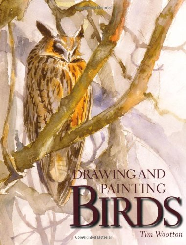 Drawing and Painting Birds - Tim Wootton