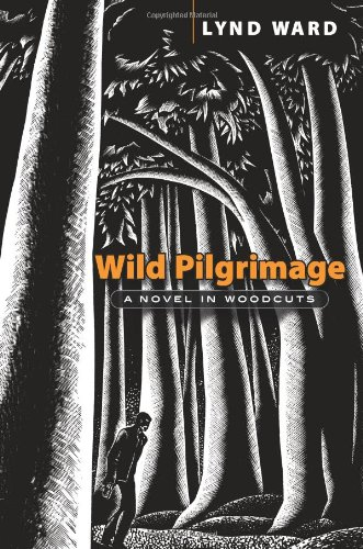 Wild Pilgrimage: A Novel in Woodcuts (Dover Fine Art, History of Art) - Lynd Ward