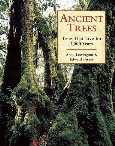 Ancient Trees: Trees That Live For 1,000 Years - Anna Lewington; Edward Parker
