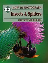 How to Photograph Insects and Spiders