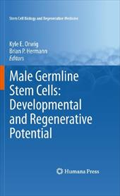 Male Germline Stem Cells: Developmental and Regenerative Potential - Orwig, Kyle E. / Hermann, Brian P.