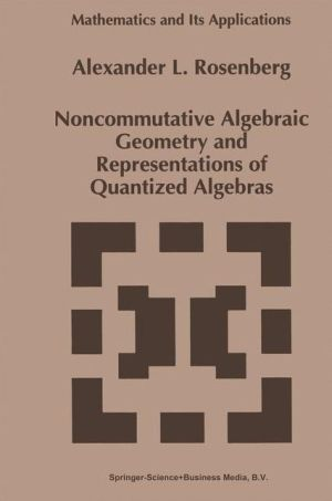 Noncommutative Algebraic Geometry and Representations of Quantized Algebras - A. Rosenberg
