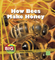 How Bees Make Honey - Louise Spilsbury