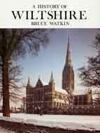 A History of Wiltshire (Darwen county histories series) - Watkin, Bruce