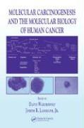 Molecular Carcinogenesis and the Molecular Biology of Human Cancer