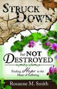 Struck Down But Not Destroyed: Finding Hope in the Maze of Suffering - Smith, Roxanne M.