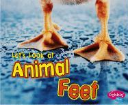 Let's Look at Animal Feet