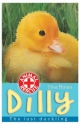 Dilly the lost duckling - Tina Nolan