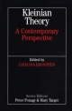 Kleinian Theory - Catalina Bronstein