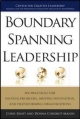 Boundary Spanning Leadership: Six Practices for Solving Problems, Driving Innovation, and Transforming Organizations - Chris Ernst;  Donna Chrobot-Mason