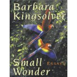 Small Wonder (Walker Large Print Books) - Barbara Kingsolver