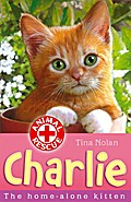 Charlie the home-alone kitten - Tina Nolan