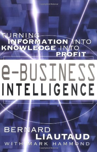 e-Business Intelligence: Turning Information into Knowledge into Profit - Bernard Liautaud