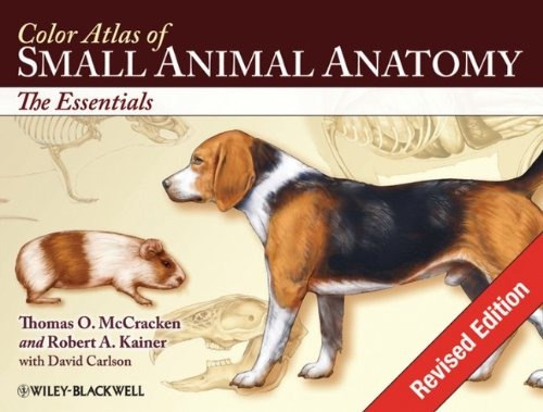 Color Atlas of Small Animal Anatomy: The Essentials - Thomas O. McCracken; Robert A. Kainer