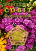 Beginner's COBIT Companion - Gilling, T