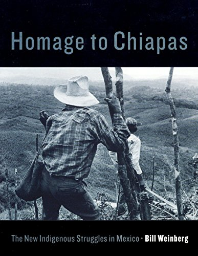 Homage to Chiapas - The New Indigenous Struggles in Mexico - Weinberg Bill